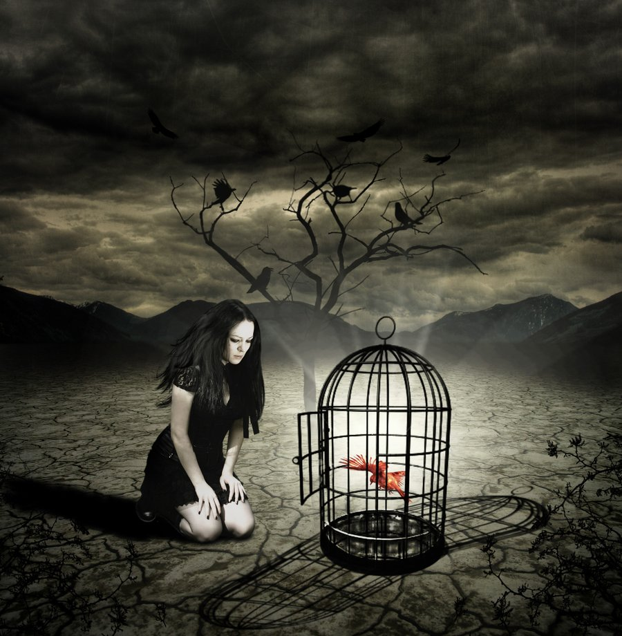 FLY_FREE_MY_SOUL_by_chryssalis